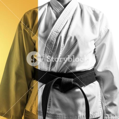 Composite image of mid section of karateka