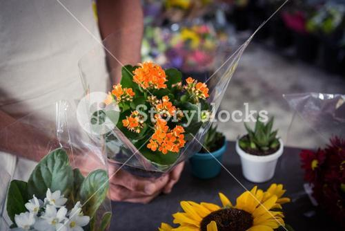 Male florist holding bouquet of flower at flower shop