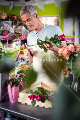Male florist trimming stems of flowers
