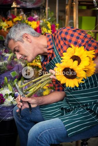 Male florist trimming stems of flowers at flower shop