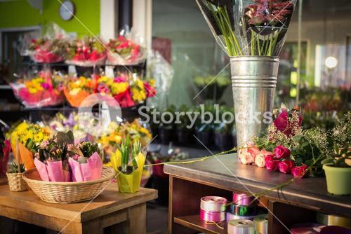 Plant pots and bouquet on table