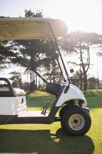 White golf buggy on field