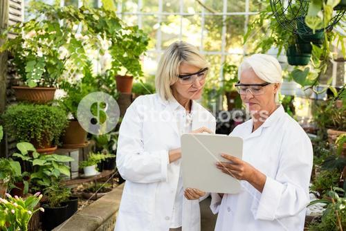 Female coworkers looking in clipboard at greenhouse