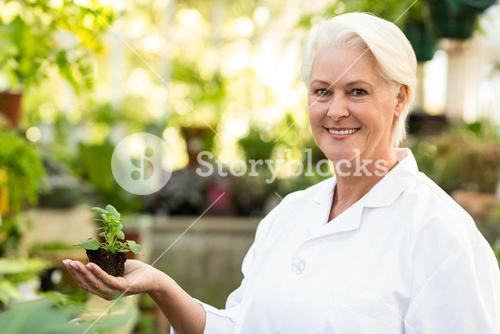 Smiling female scientist holding sapling