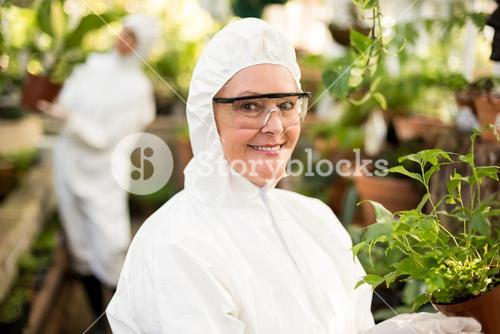 Female scientist in clean suit holding potted plant