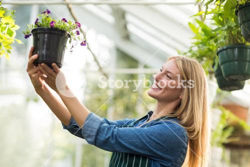 Young female gardener looking at potted flowering plant