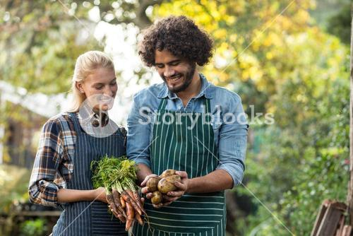 Happy coworkers holding root vegetables