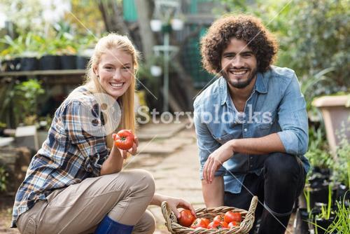 Happy coworkers with tomato basket