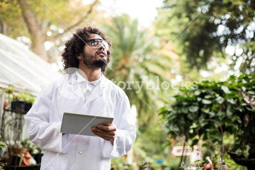 Male scientist inspecting plants at greenhouse