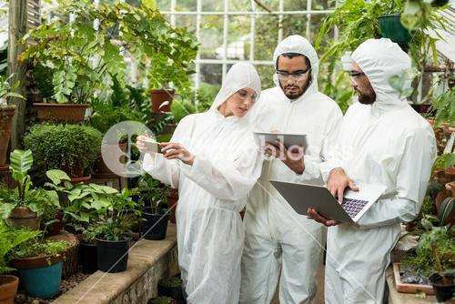 Scientists discussing over technologies at greenhouse