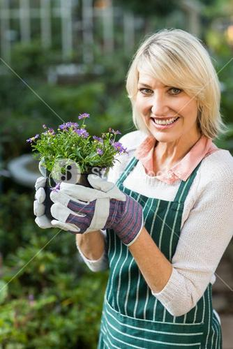 Happy mature female gardener holding potted flowers