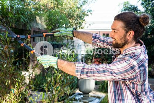 Happy hipster cutting hedges with clippers at garden