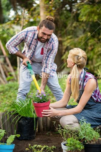 Happy gardeners planting potted plants at garden