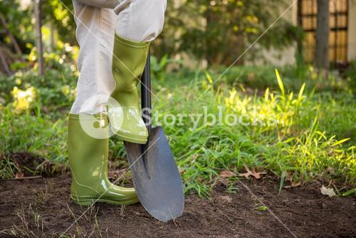 Low section of female gardener with shovel at garden