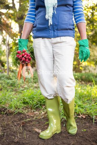 Low section of gardener with vegetables at garden