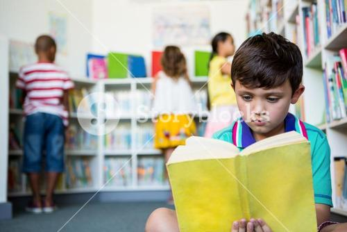 Elementary boy reading book at school library