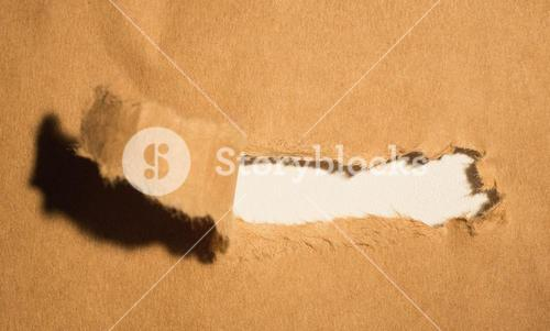 Close-up of damaged brown paper