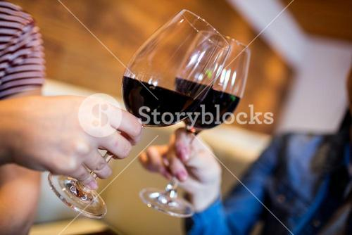 Female friends toasting wineglass