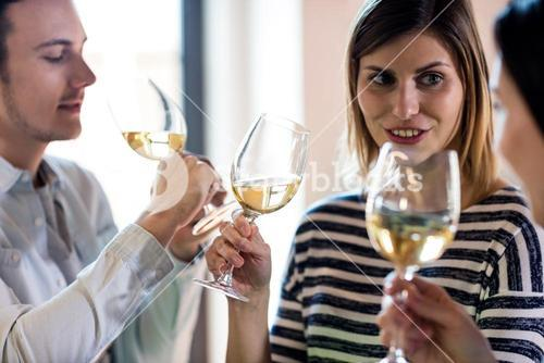 Young friends drinking wine