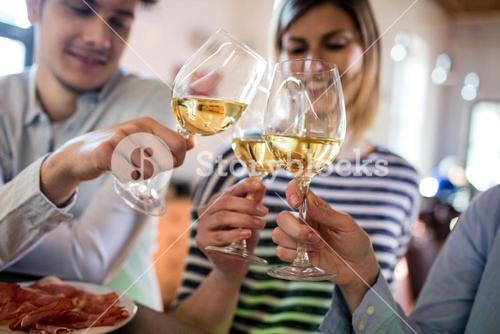 Friends toasting wineglass in bar