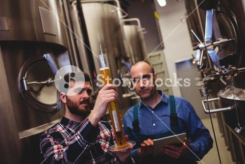 Manufacturer inspecting beer in tube with worker