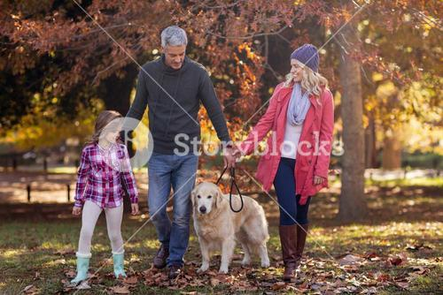 Family Walking With Dog At Park
