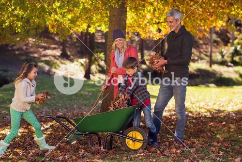 Family picking up autumn leaves