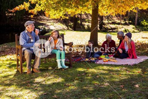 Family picnicking and the grandfather playing with his grand daughter
