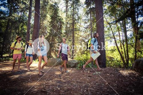 Group of friends walking together in forest