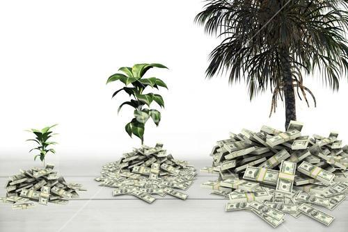 plants and tree growing from money piles