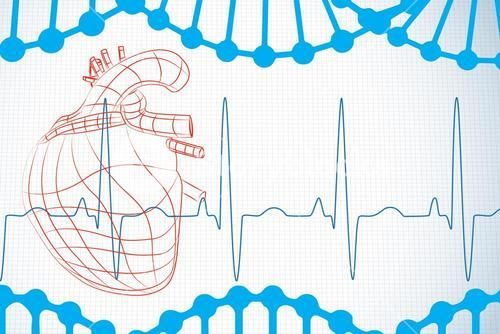 Red heart with ecg line