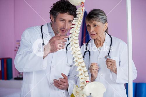 Two physiotherapists discussing with spine model