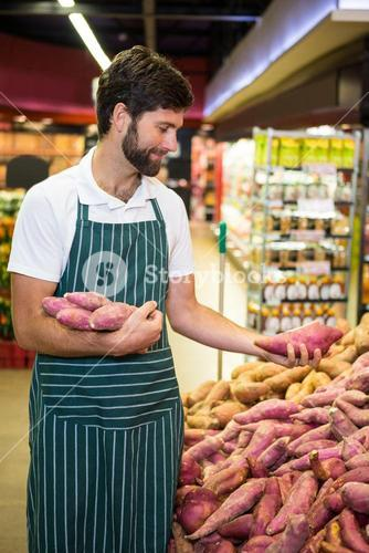Male staff arranging sweet potato in organic section