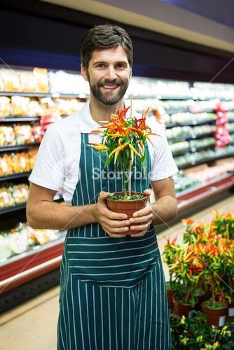 Smiling male staff holding pot plant in supermarket