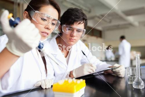 Focused scientists making an experiment