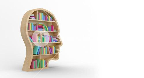 Digital image of colorful books in brown human face bookshelves