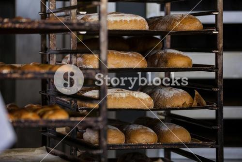 Baked breads and buns kept in shelf