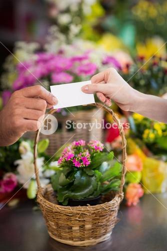 Florist giving visiting card to customer