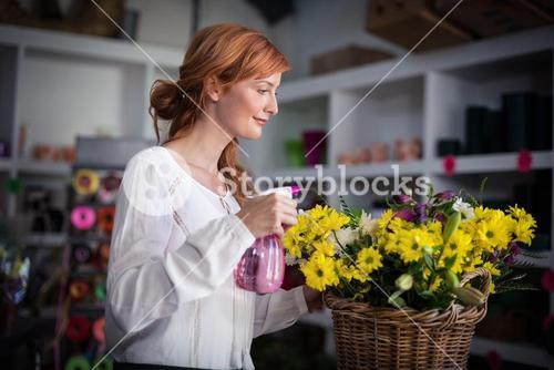 Female florist spraying water on flowers