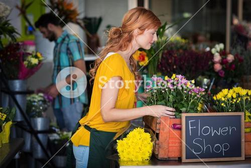 Female florist arranging bouquet of flower