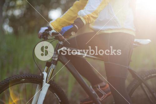 Mid-section of male biker with mountain bike in forest
