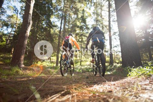 Biker couple riding mountain bike in the forest
