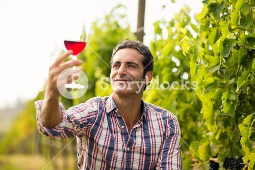 Smiling male vintner looking at glass of wine
