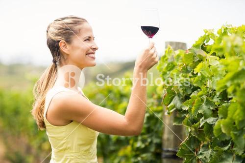 Female vintner holding wine glass