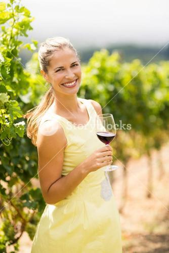Portrait of female vintner holding wine glass