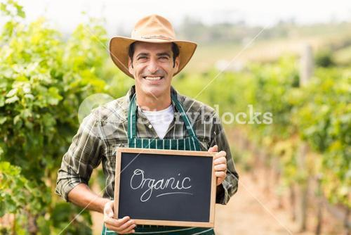Portrait of smiling farmer holding an organic sign