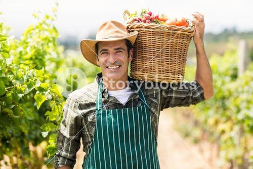 Portrait of happy farmer carrying a basket of vegetables