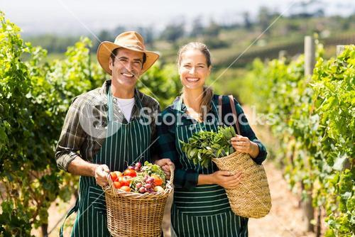 Portrait of happy farmer couple holding baskets of vegetables