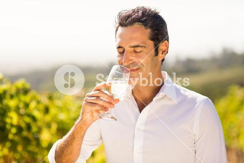 Male vintner smelling glass of wine