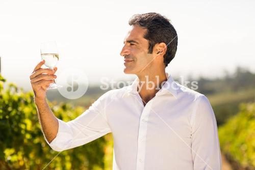 Smiling male vintner looking at a glass of wine
